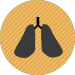 Smoking and Respiratory Disease
